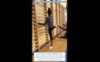 GR : Ruches - vidéo de travail N°9 - Les ondes