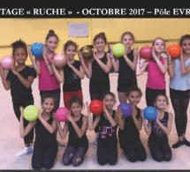 """GR : Photo Premier stage """"RUCHE"""" - Octobre 2017"""