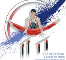 GAM : Affiche de la rencontre Vélizy contre Montceau-Les-Mines,  le 16 décembre 2017